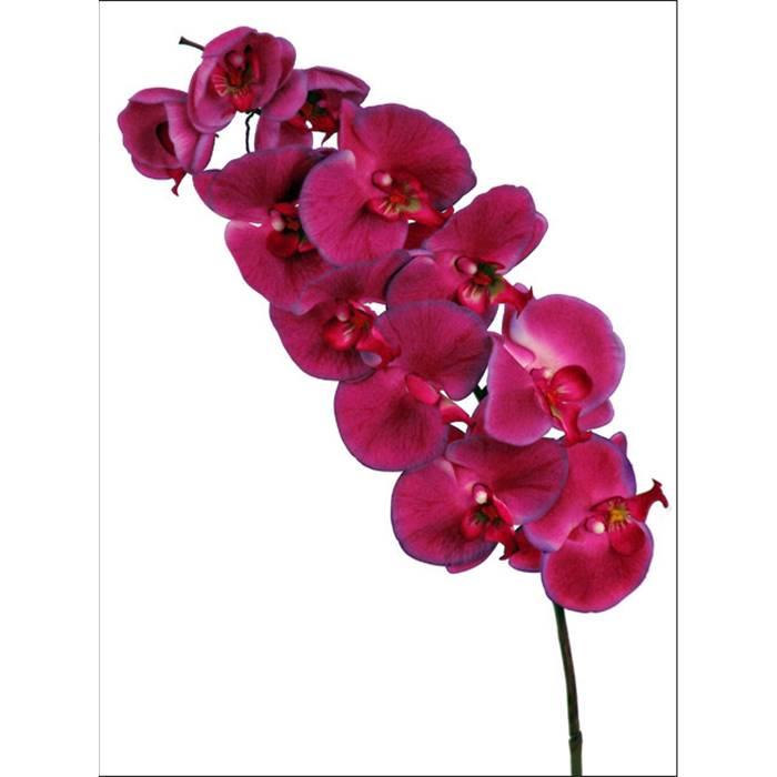 Цветы ростова где купить орхидею свадебный букет екатеринбург заказать
